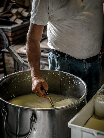 Making Ricotta Cheese